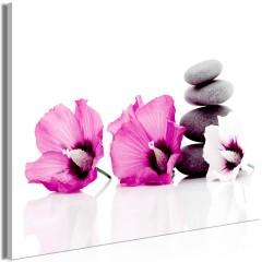 Artgeist Wandbild - Calm Mallow (1 Part) Wide Pink