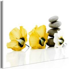 Artgeist Wandbild - Calm Mallow (1 Part) Wide Yellow