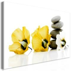 Artgeist Wandbild - Calm Mallow (1 Part) Yellow