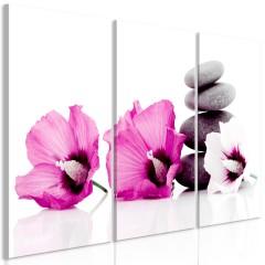 Artgeist Wandbild - Calm Mallow (3 Parts) Pink