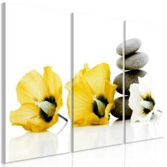 Artgeist Wandbild - Calm Mallow (3 Parts) Yellow