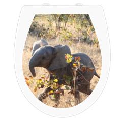 WC-Sitz Aufkleber Elefantenbaby